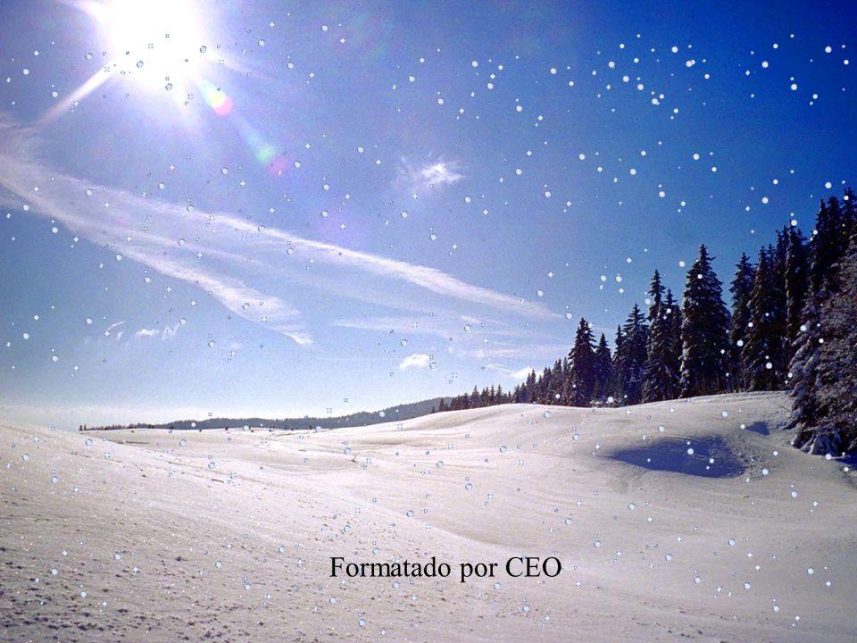 Formatado por CEO