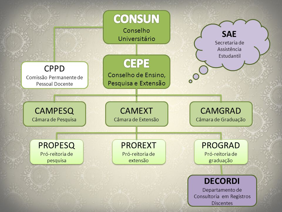 CONSUN CEPE SAE CPPD CAMPESQ CAMEXT CAMGRAD PROPESQ PROREXT PROGRAD