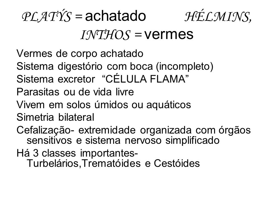 PLATÝS = achatado HÉLMINS, INTHOS = vermes