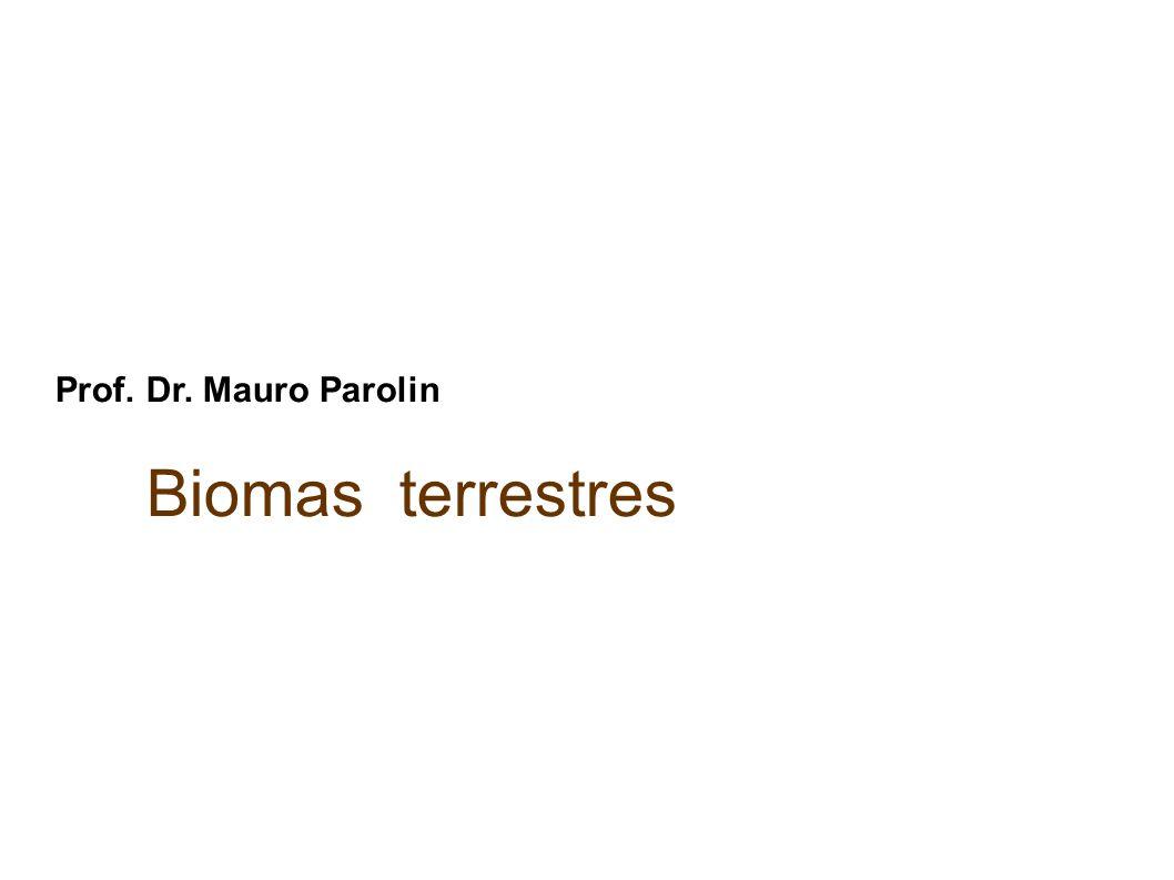 Prof. Dr. Mauro Parolin Biomas terrestres