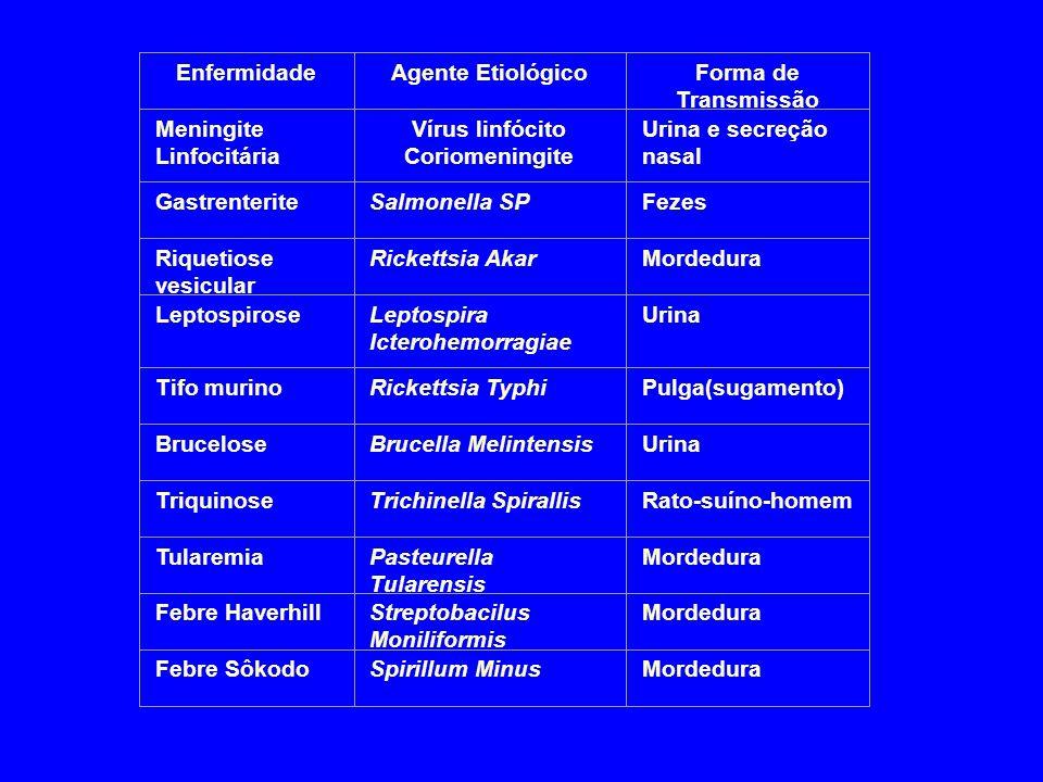 Vírus linfócito Coriomeningite