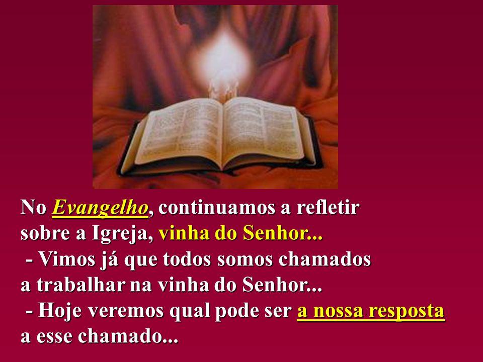 No Evangelho, continuamos a refletir sobre a Igreja, vinha do Senhor...