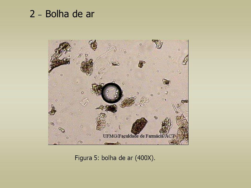 2 – Bolha de ar Figura 5: bolha de ar (400X).