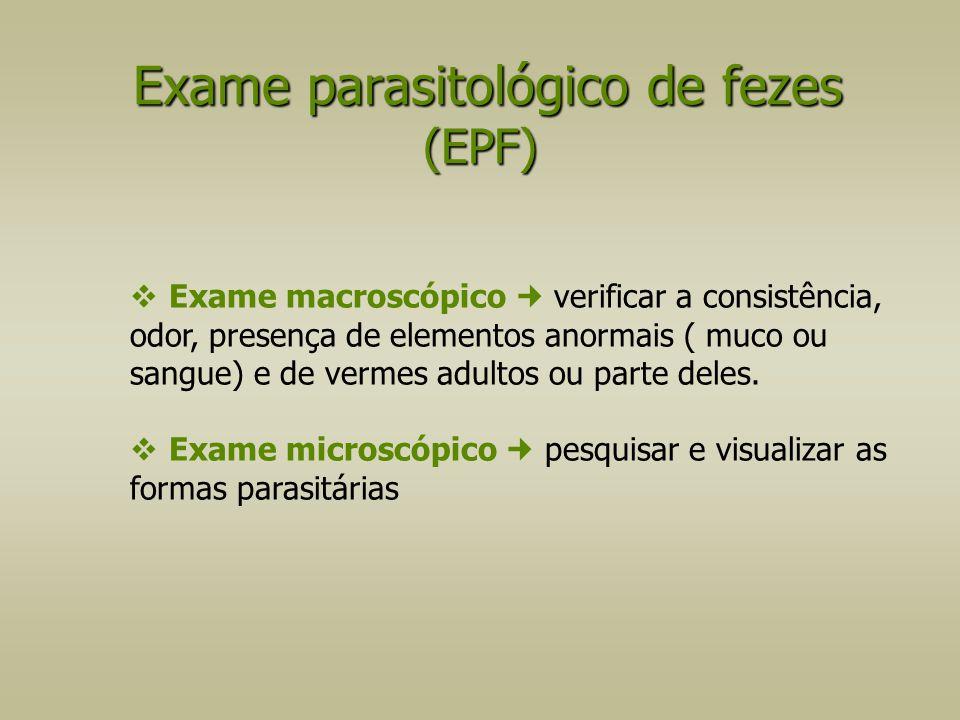 Exame parasitológico de fezes (EPF)