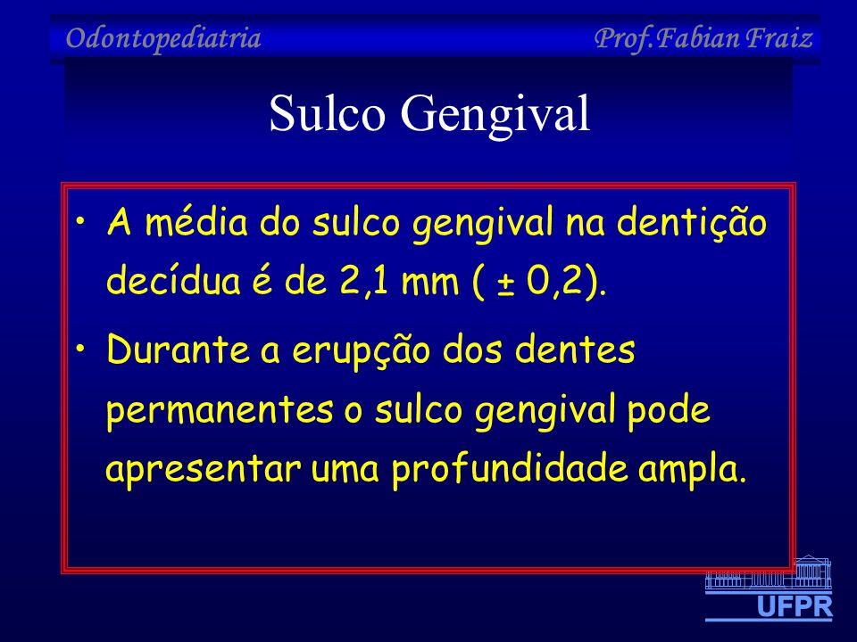 Sulco Gengival A média do sulco gengival na dentição decídua é de 2,1 mm ( ± 0,2).