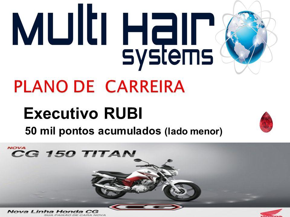 PLANO DE CARREIRA Executivo RUBI 50 mil pontos acumulados (lado menor)