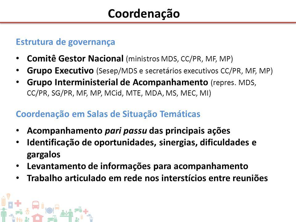 Coordenação Estrutura de governança