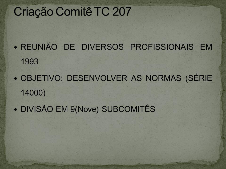 Criação Comitê TC 207 REUNIÃO DE DIVERSOS PROFISSIONAIS EM 1993