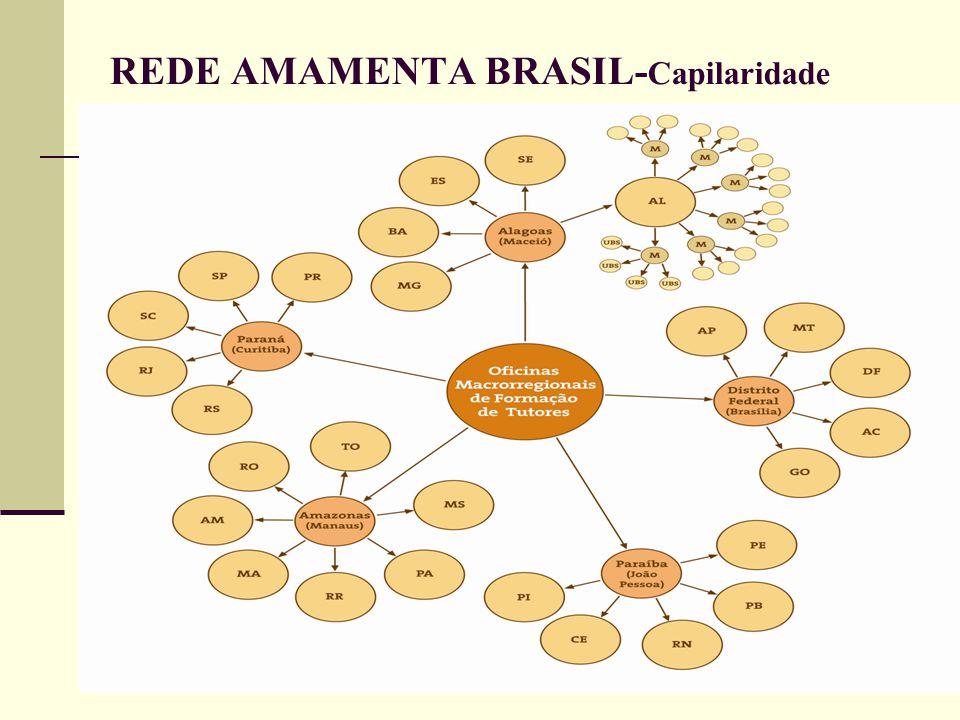 REDE AMAMENTA BRASIL-Capilaridade