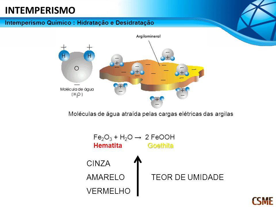 Moléculas de água atraída pelas cargas elétricas das argilas