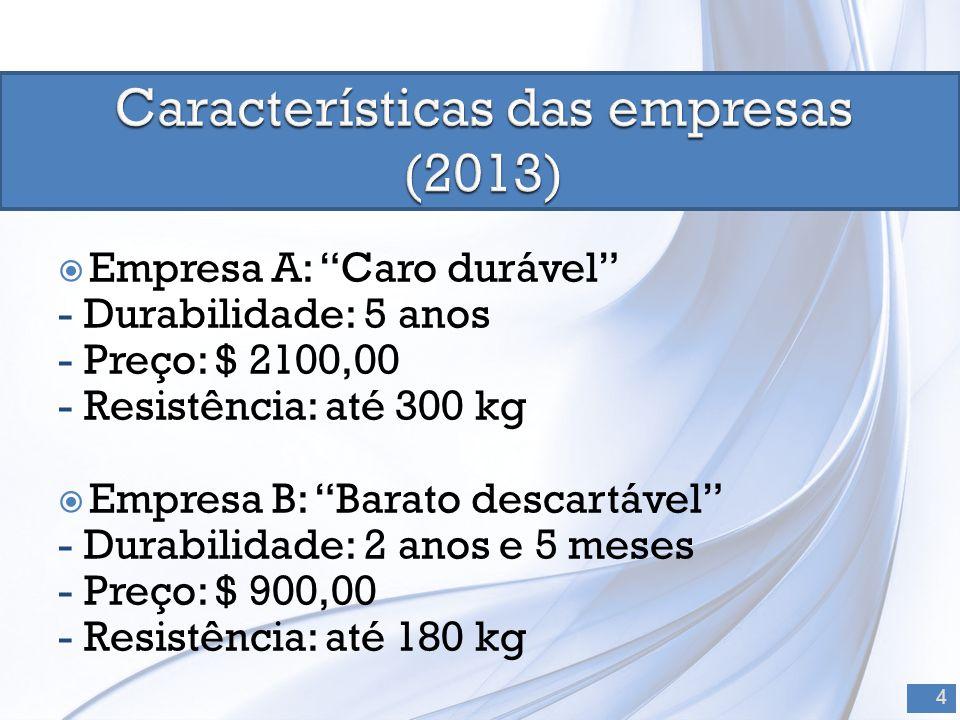 Características das empresas (2013)