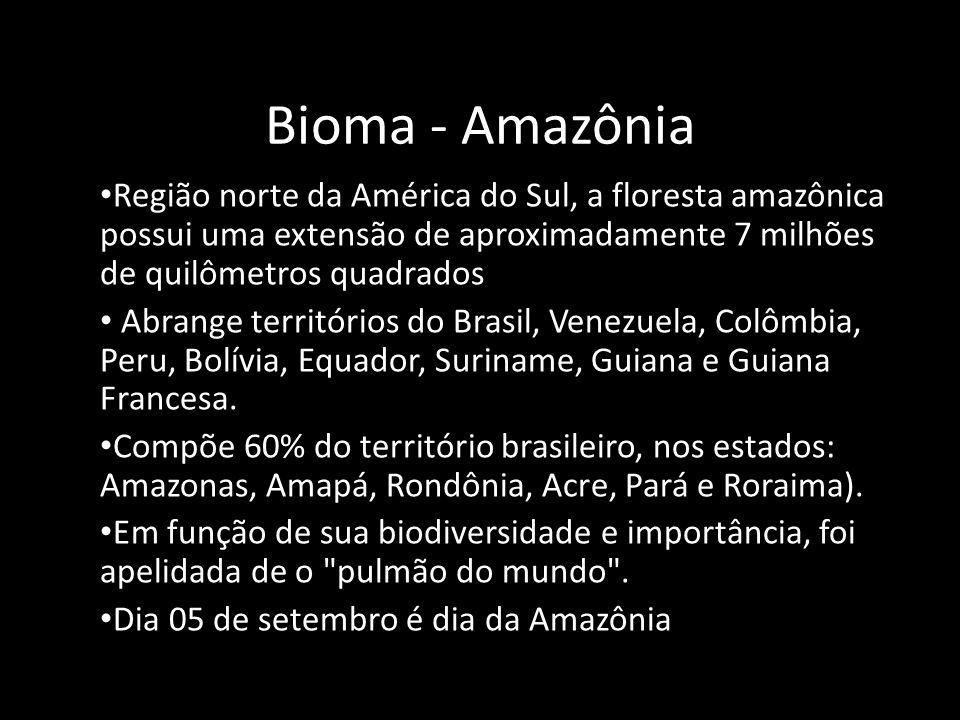 Bioma - Amazônia Região norte da América do Sul, a floresta amazônica possui uma extensão de aproximadamente 7 milhões de quilômetros quadrados.