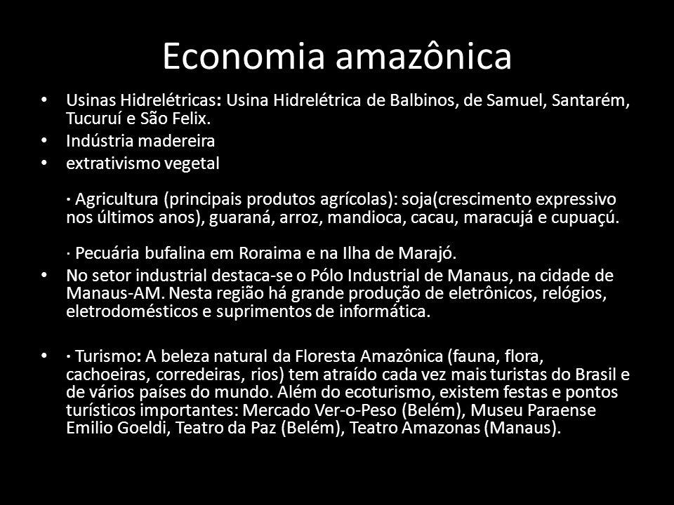 Economia amazônica Usinas Hidrelétricas: Usina Hidrelétrica de Balbinos, de Samuel, Santarém, Tucuruí e São Felix.