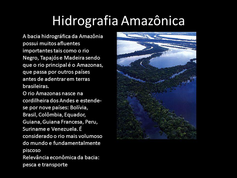 Hidrografia Amazônica