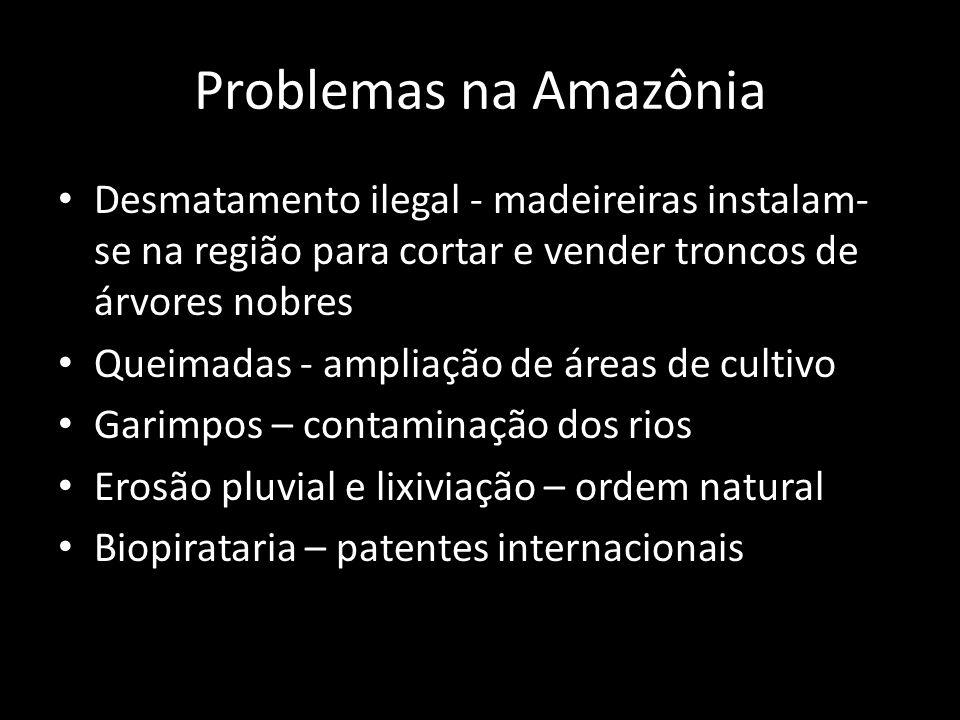 Problemas na Amazônia Desmatamento ilegal - madeireiras instalam-se na região para cortar e vender troncos de árvores nobres.