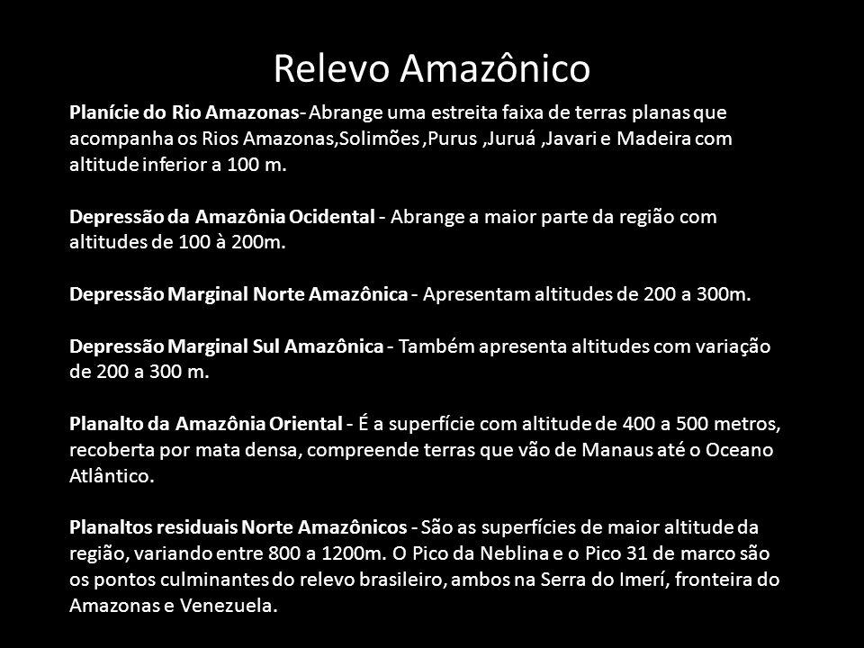 Relevo Amazônico