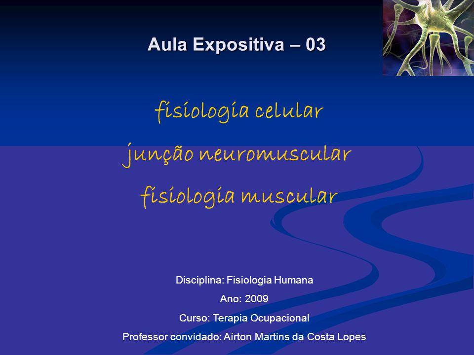 fisiologia celular junção neuromuscular fisiologia muscular