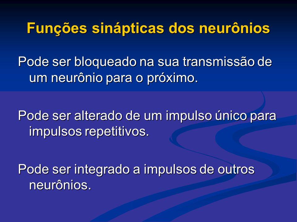 Funções sinápticas dos neurônios