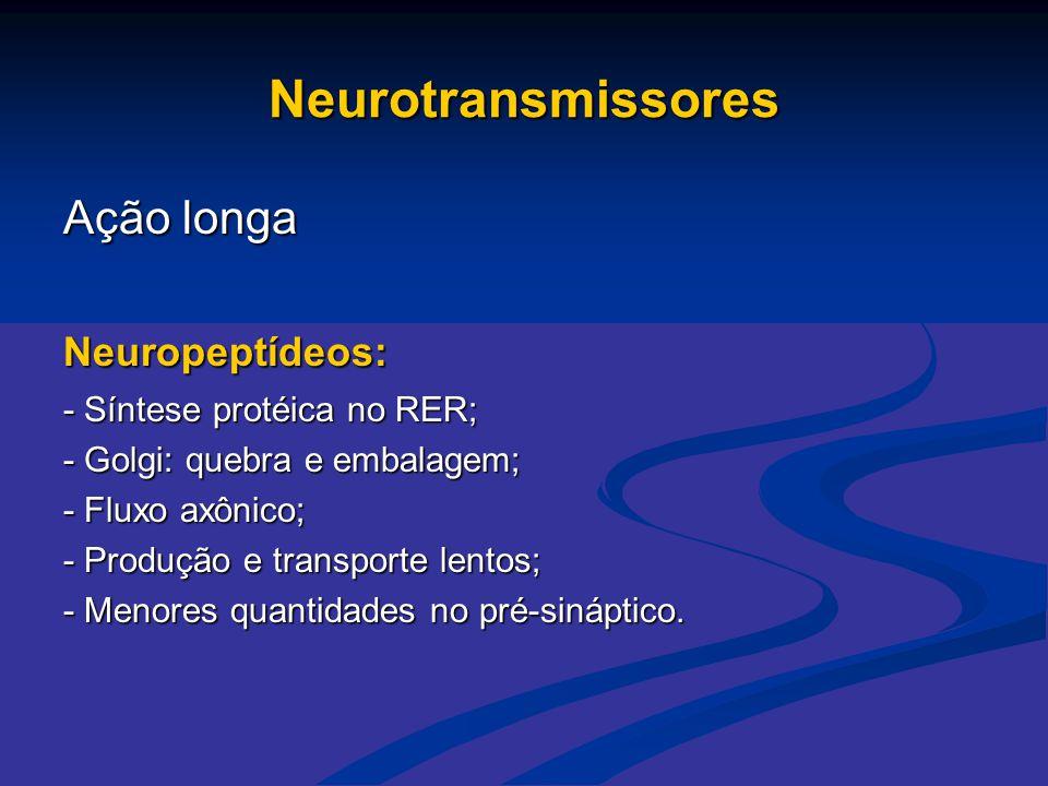 Neurotransmissores Ação longa Neuropeptídeos: