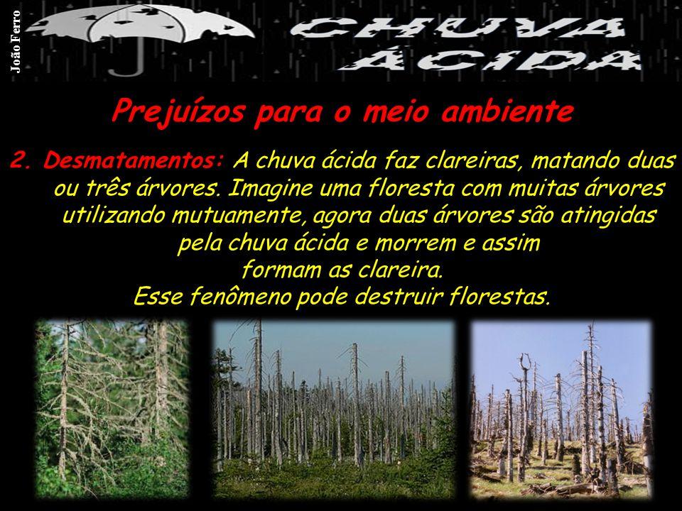 Prejuízos para o meio ambiente