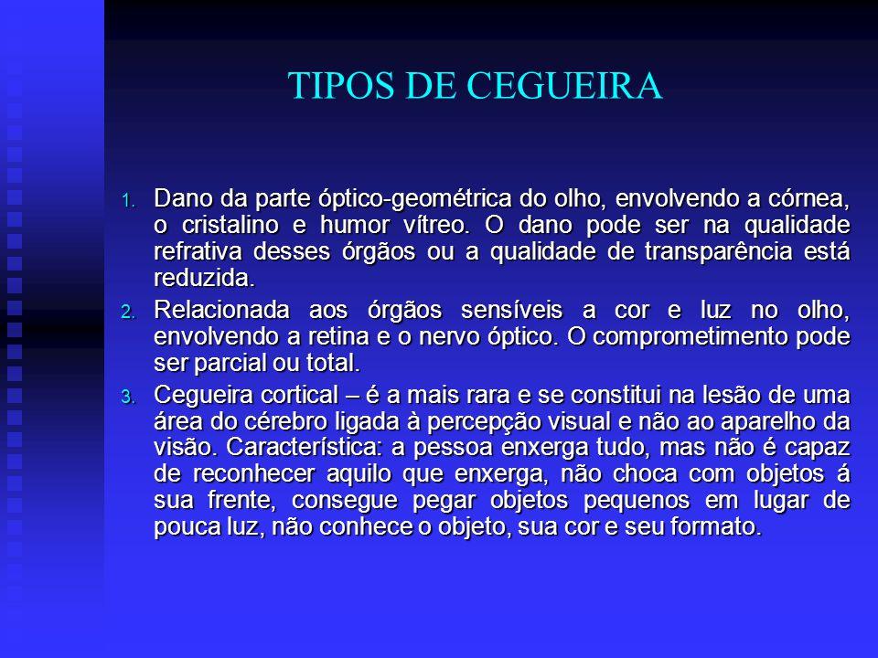TIPOS DE CEGUEIRA