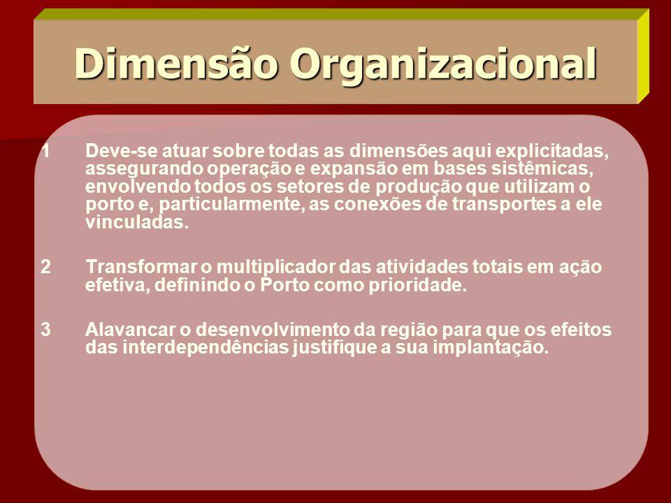 Dimensão Organizacional