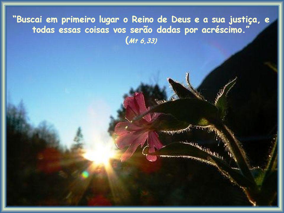 Buscai em primeiro lugar o Reino de Deus e a sua justiça, e todas essas coisas vos serão dadas por acréscimo. (Mt 6,33)