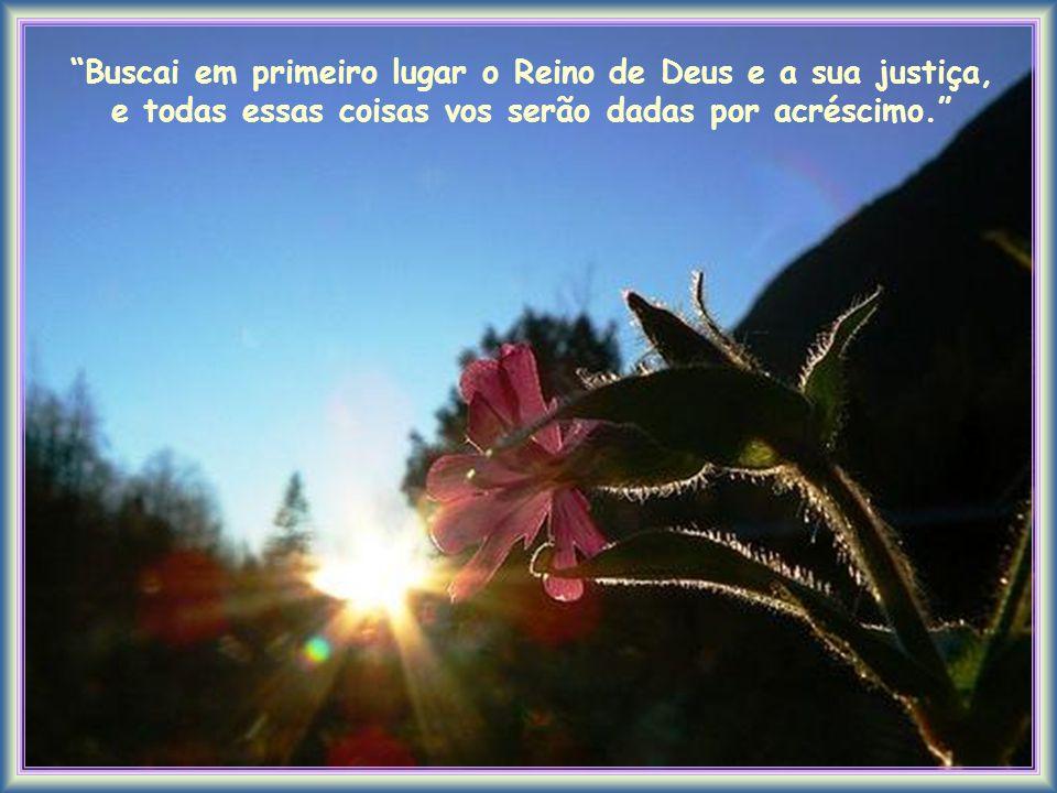 Buscai em primeiro lugar o Reino de Deus e a sua justiça, e todas essas coisas vos serão dadas por acréscimo.