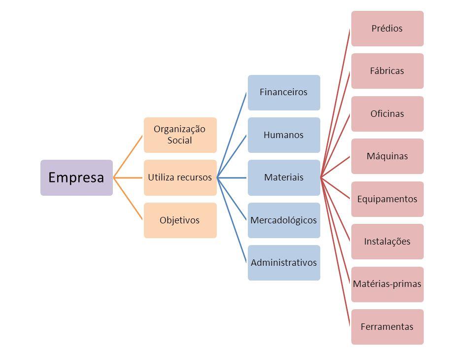 Empresa Organização Social Utiliza recursos Financeiros Humanos