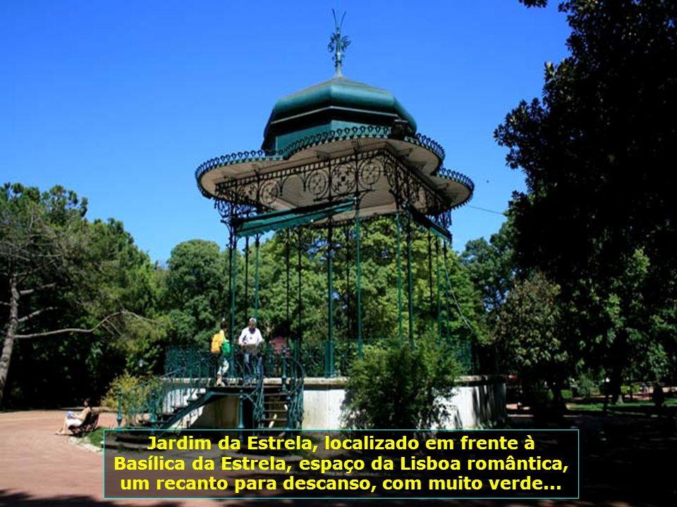 IMG_3508 - PORTUGAL - LISBOA - PARQUE DA ESTRELA-700