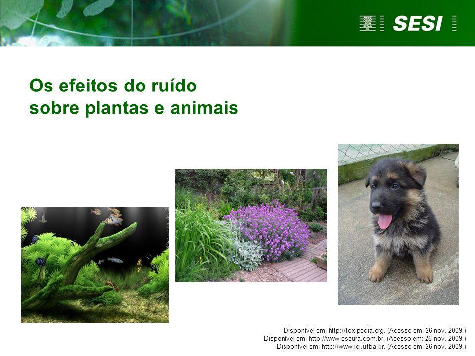 sobre plantas e animais