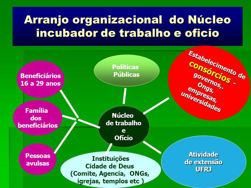 Arranjo organizacional do Núcleo incubador de trabalho e oficio