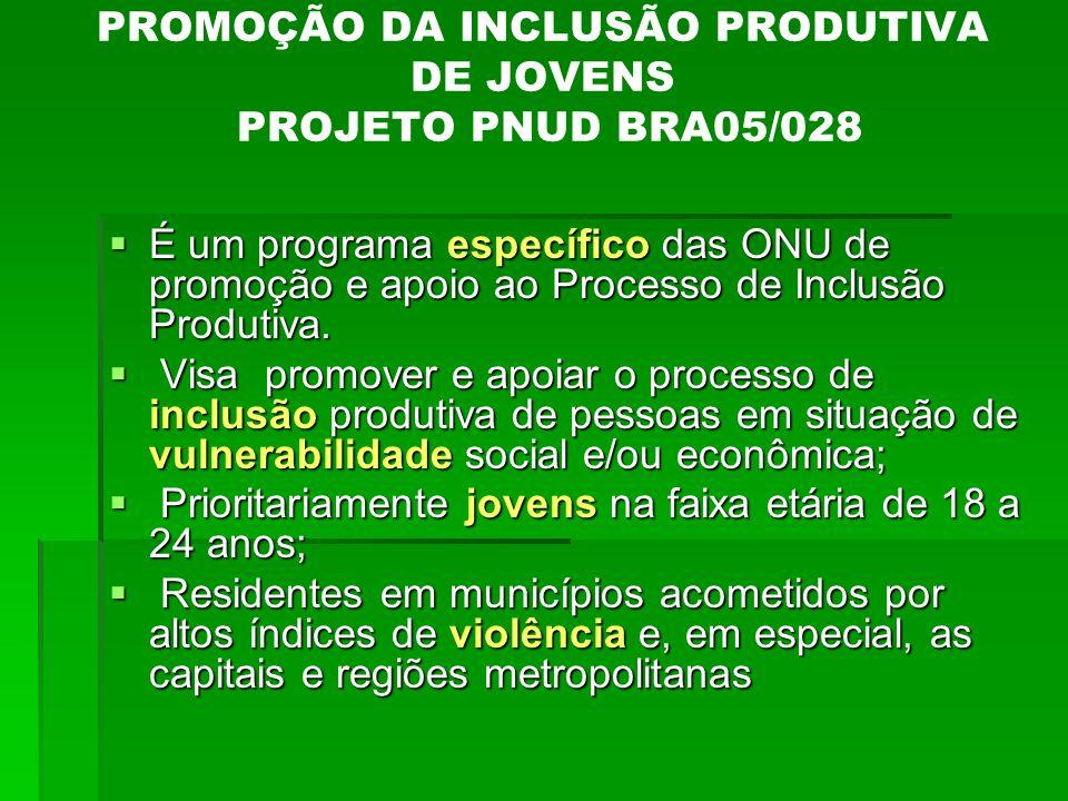 PROMOÇÃO DA INCLUSÃO PRODUTIVA DE JOVENS PROJETO PNUD BRA05/028
