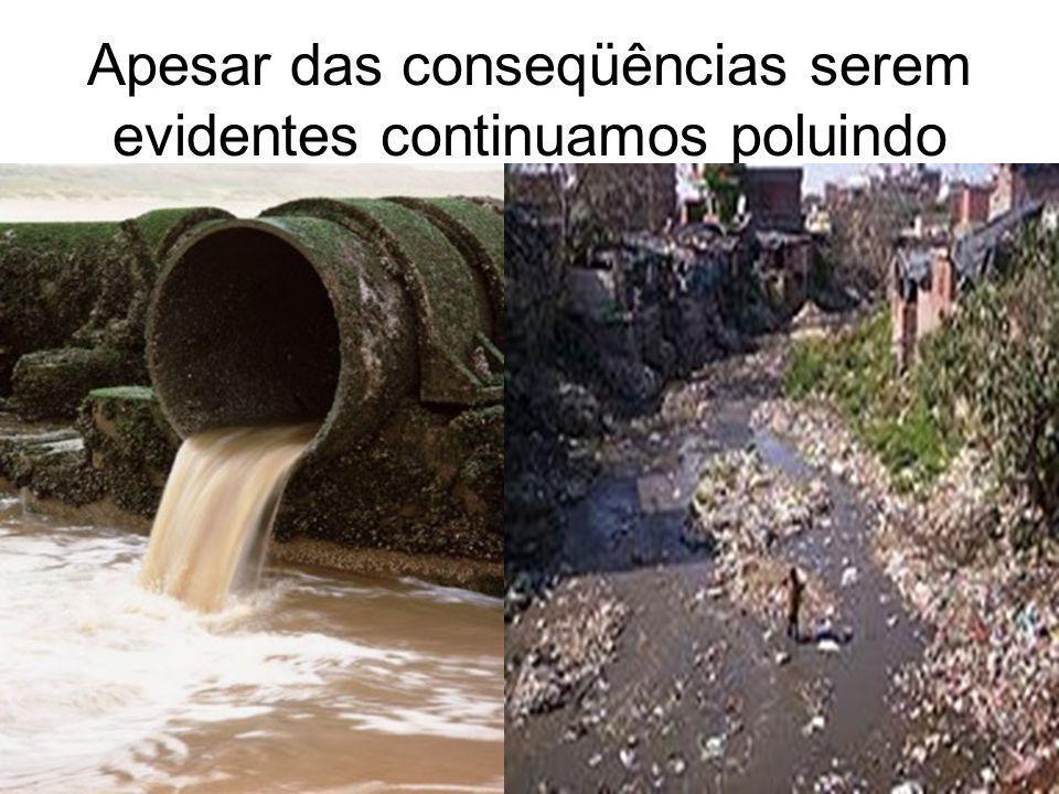 Apesar das conseqüências serem evidentes continuamos poluindo