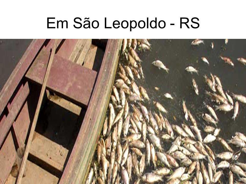 Em São Leopoldo - RS