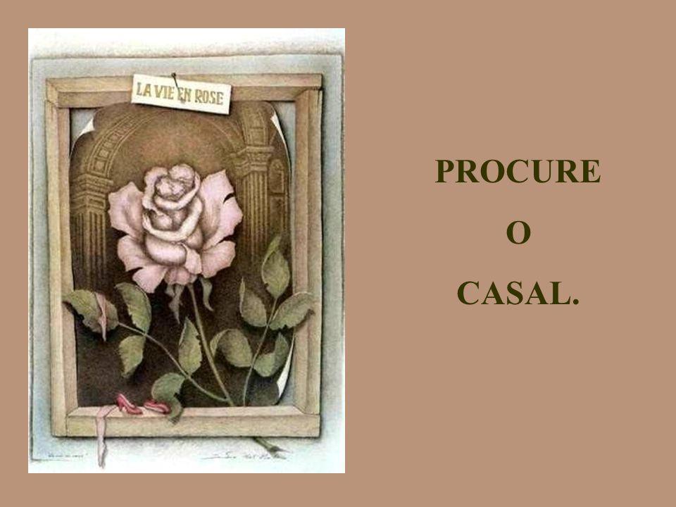 PROCURE O CASAL.