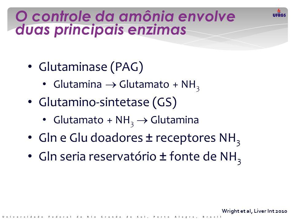 O controle da amônia envolve duas principais enzimas
