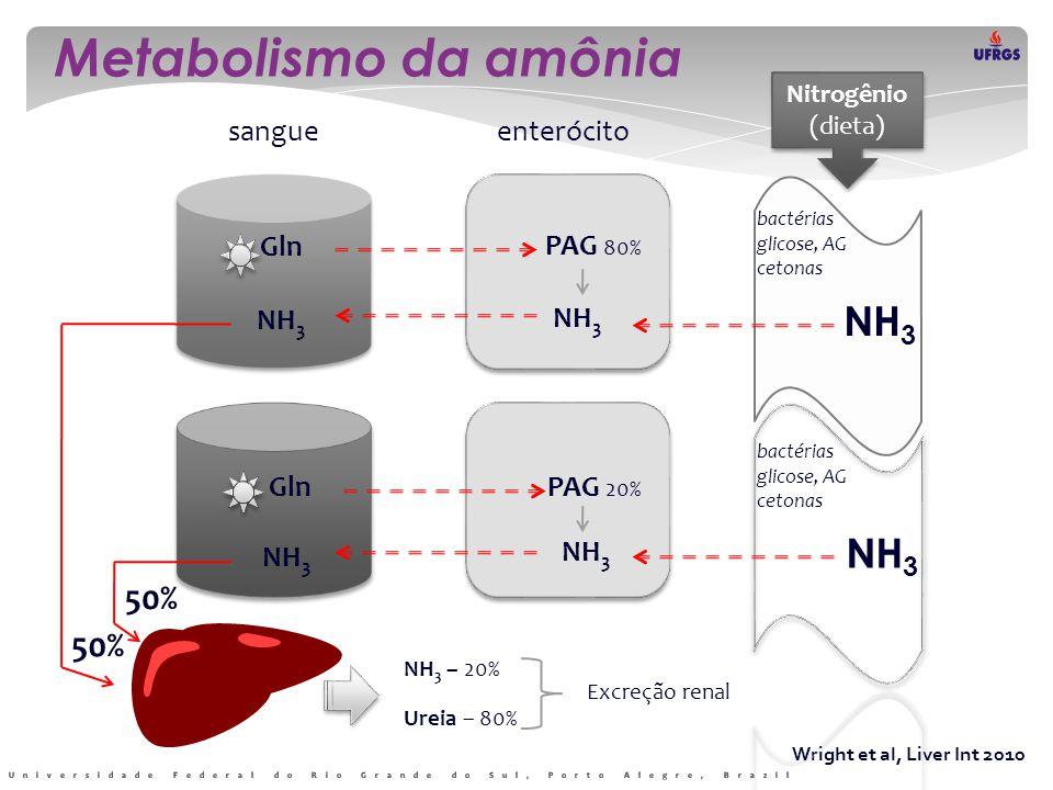 Metabolismo da amônia NH3 NH3 50% 50% sangue enterócito Gln PAG 80%