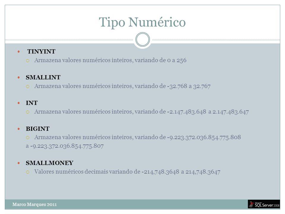 Tipo Numérico TINYINT. Armazena valores numéricos inteiros, variando de 0 a 256. SMALLINT.