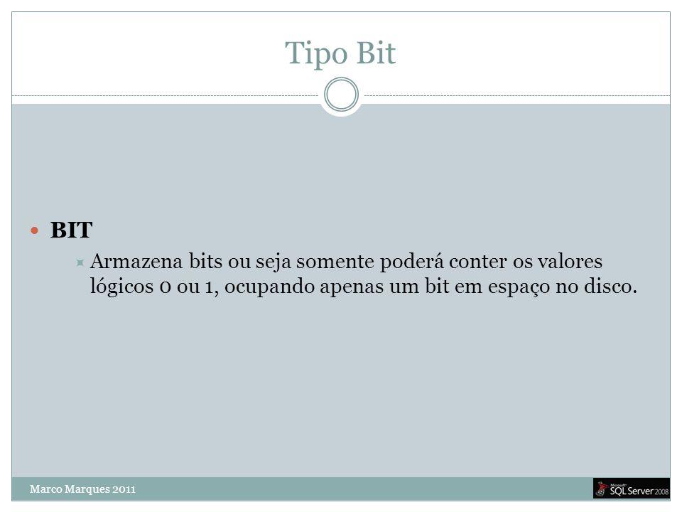 Tipo Bit BIT. Armazena bits ou seja somente poderá conter os valores lógicos 0 ou 1, ocupando apenas um bit em espaço no disco.