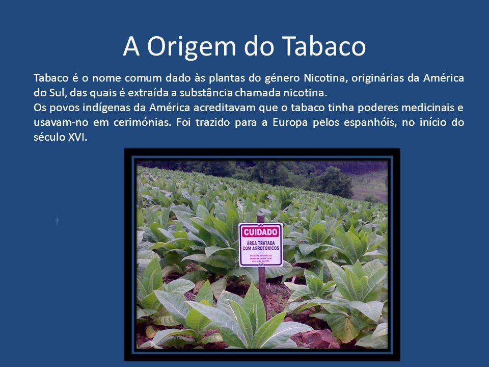 A Origem do Tabaco
