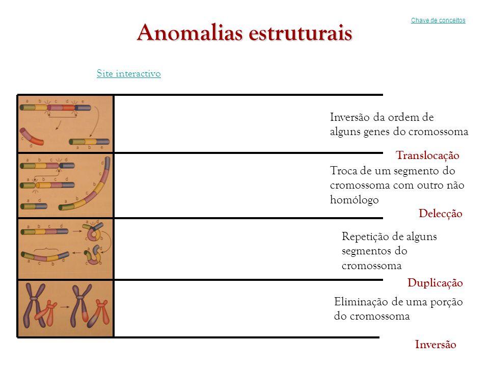 Anomalias estruturais