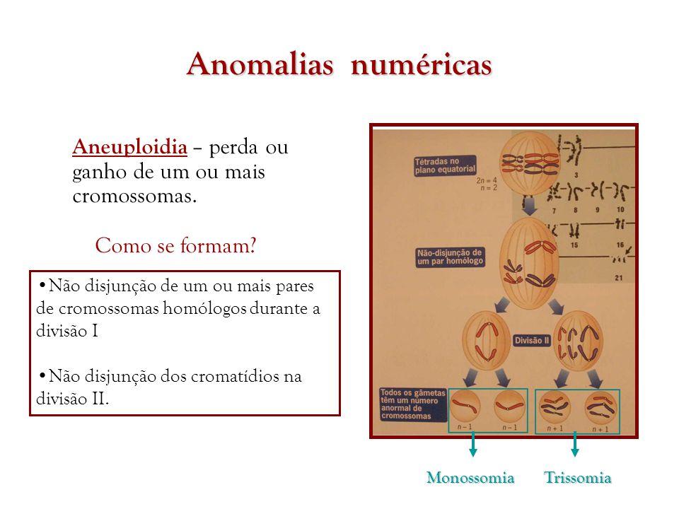 Anomalias numéricas Aneuploidia – perda ou ganho de um ou mais cromossomas. Como se formam
