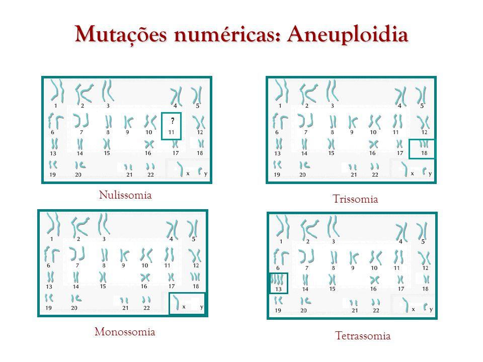 Mutações numéricas: Aneuploidia