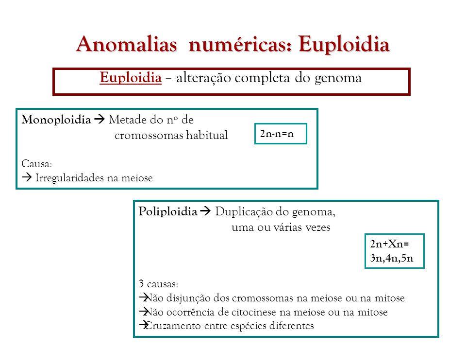 Anomalias numéricas: Euploidia