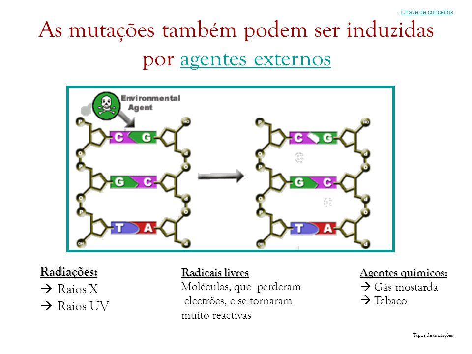 As mutações também podem ser induzidas por agentes externos