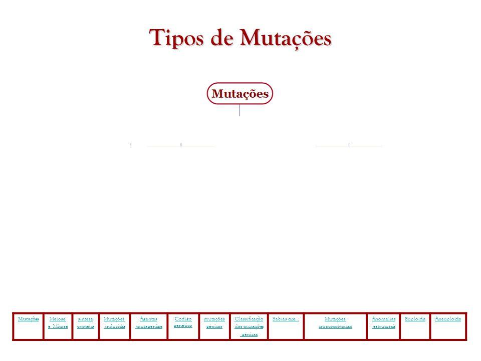 Tipos de Mutações Mutações Meiose e Mitose síntese proteica induzidas