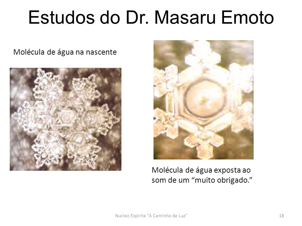 Estudos do Dr. Masaru Emoto