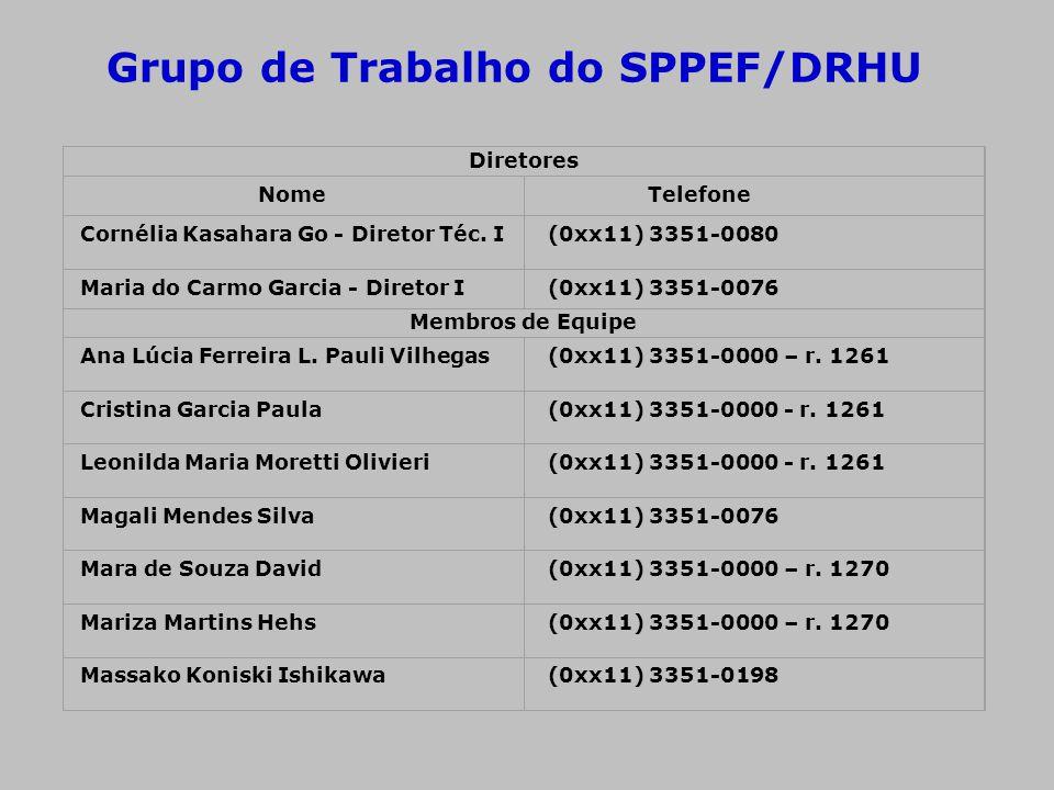 Grupo de Trabalho do SPPEF/DRHU