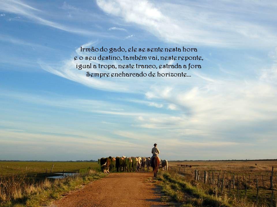 Irmão do gado, ele se sente nesta hora e o seu destino, também vai, neste reponte, igual a tropa, neste tranco, estrada a fora Sempre encharcado de horizonte...